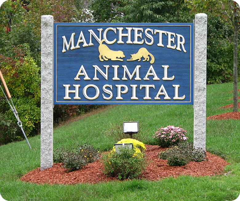 Manchester Animal Hospital
